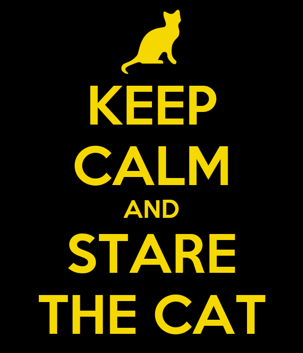 KEEP CALM AND STARE THE CAT
