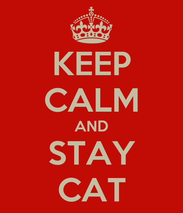 KEEP CALM AND STAY CAT