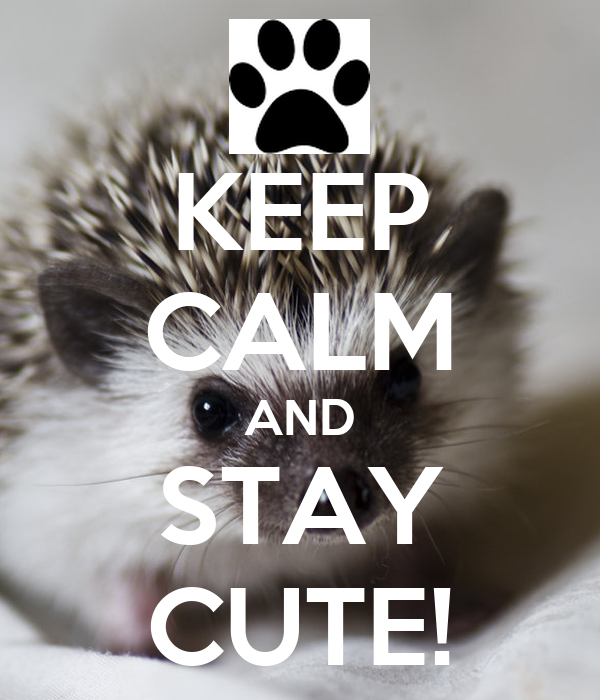KEEP CALM AND STAY CUTE!