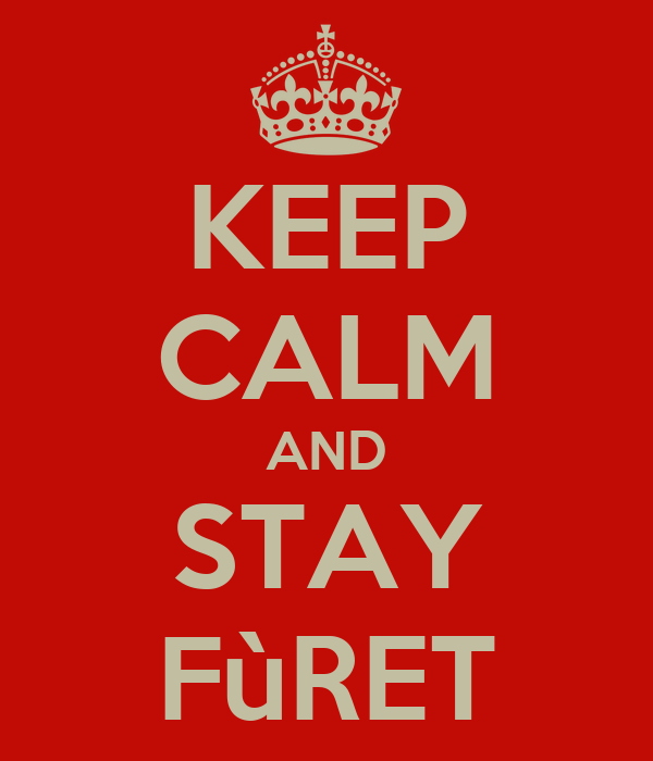 KEEP CALM AND STAY FùRET