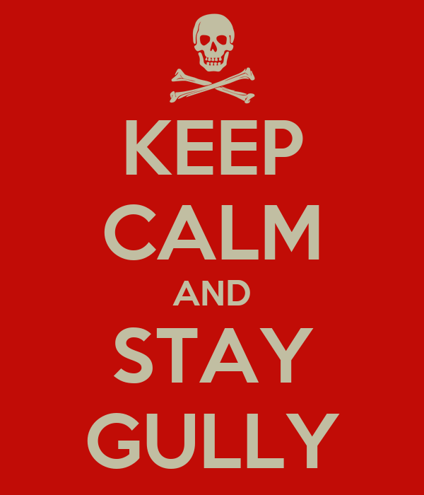 KEEP CALM AND STAY GULLY