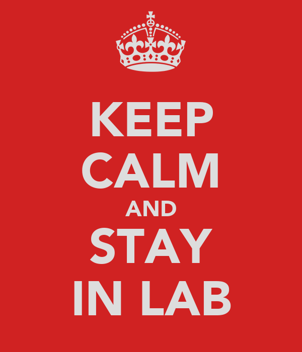 KEEP CALM AND STAY IN LAB
