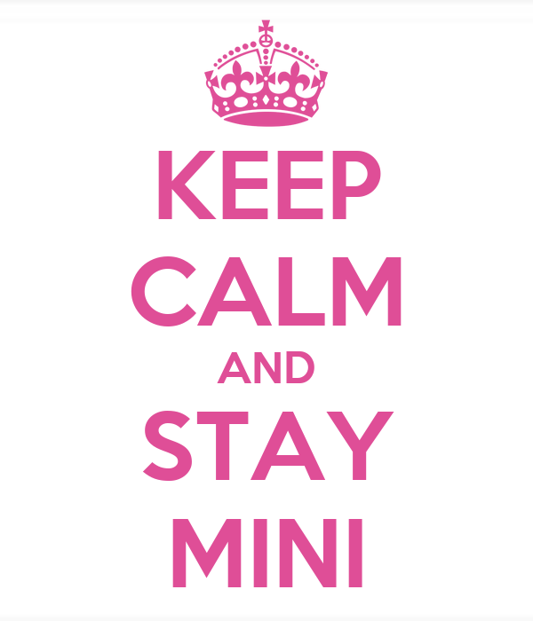 KEEP CALM AND STAY MINI