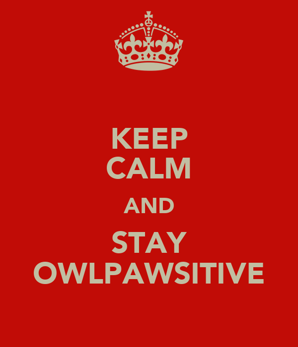 KEEP CALM AND STAY OWLPAWSITIVE