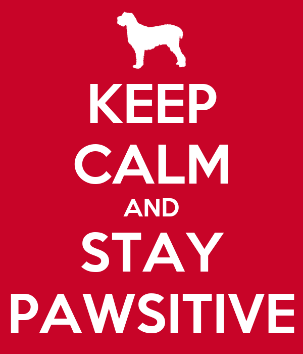 KEEP CALM AND STAY PAWSITIVE