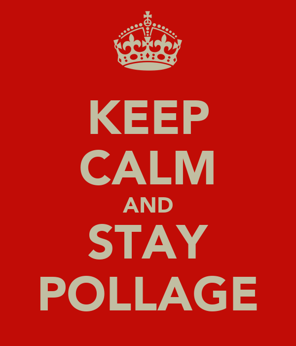 KEEP CALM AND STAY POLLAGE