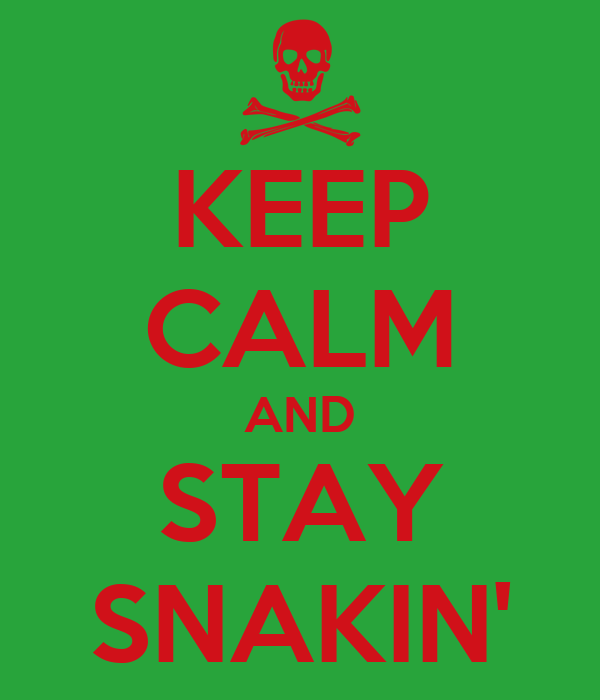 KEEP CALM AND STAY SNAKIN'