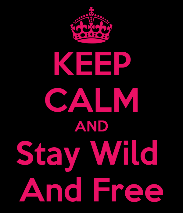 KEEP CALM AND Stay Wild  And Free