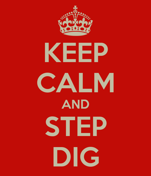 KEEP CALM AND STEP DIG