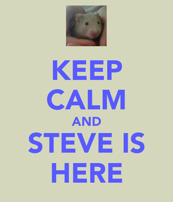 KEEP CALM AND STEVE IS HERE