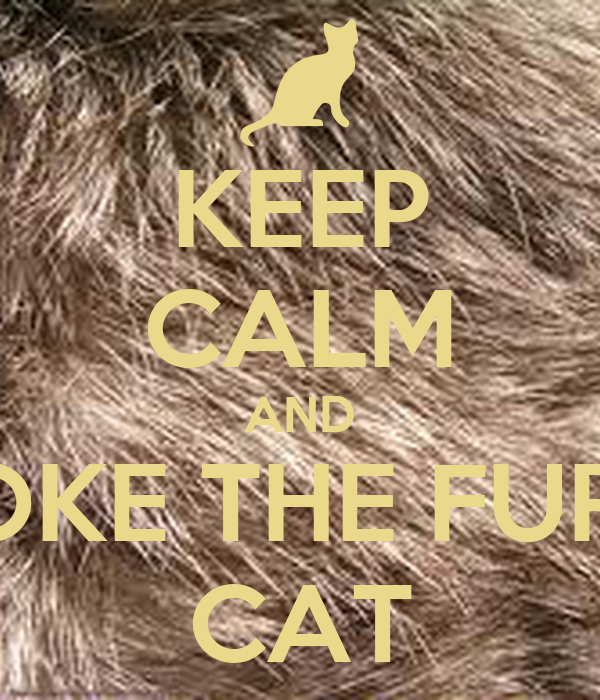 KEEP CALM AND STOKE THE FURRY CAT