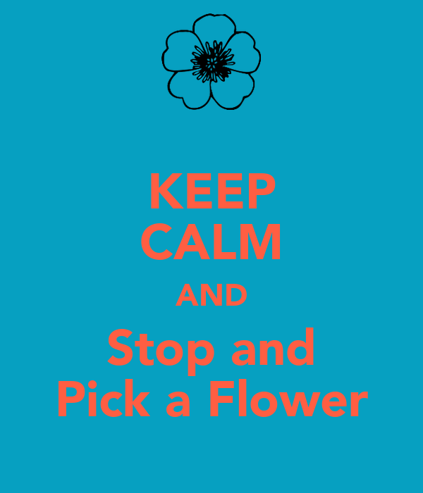 KEEP CALM AND Stop and Pick a Flower