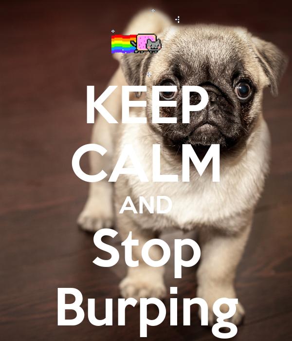 KEEP CALM AND Stop Burping
