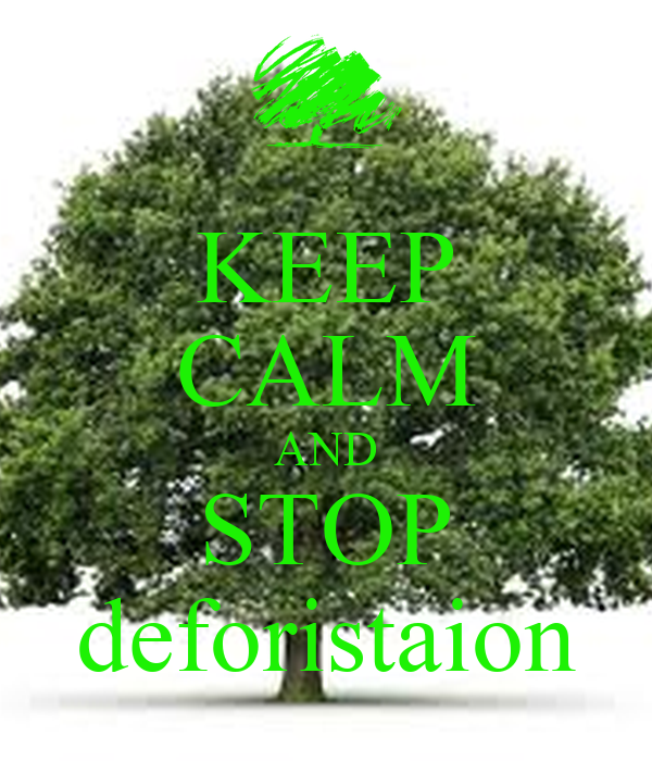 KEEP CALM AND STOP deforistaion