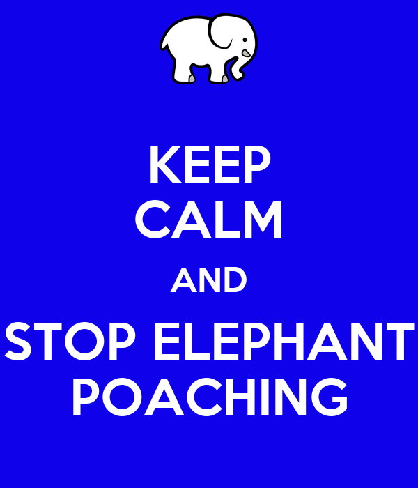 KEEP CALM AND STOP ELEPHANT POACHING