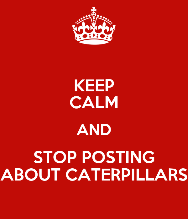 KEEP CALM AND STOP POSTING ABOUT CATERPILLARS