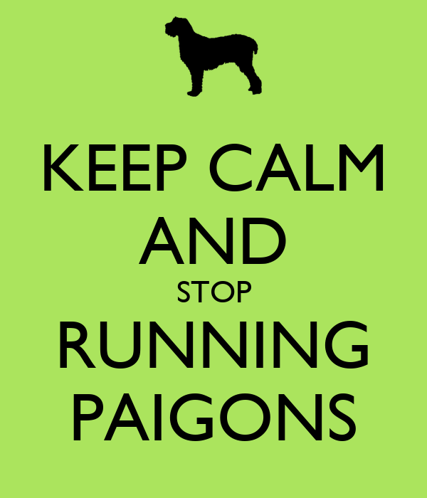 KEEP CALM AND STOP RUNNING PAIGONS