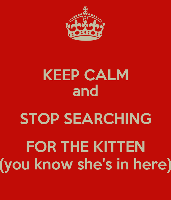 KEEP CALM and STOP SEARCHING FOR THE KITTEN (you know she's in here)
