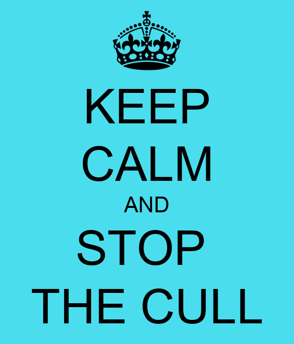 KEEP CALM AND STOP  THE CULL