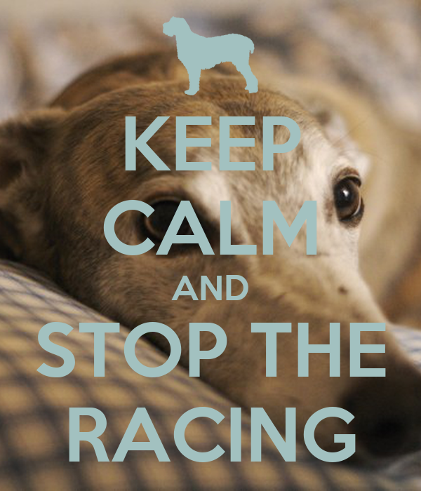 KEEP CALM AND STOP THE RACING