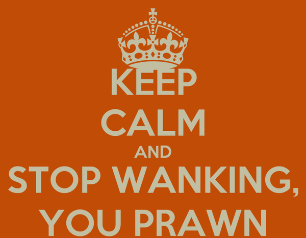 KEEP CALM AND STOP WANKING, YOU PRAWN