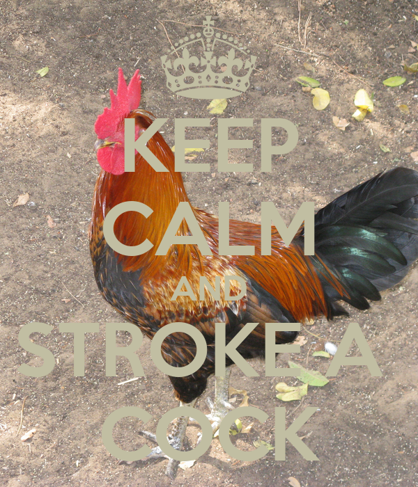 KEEP CALM AND STROKE A  COCK