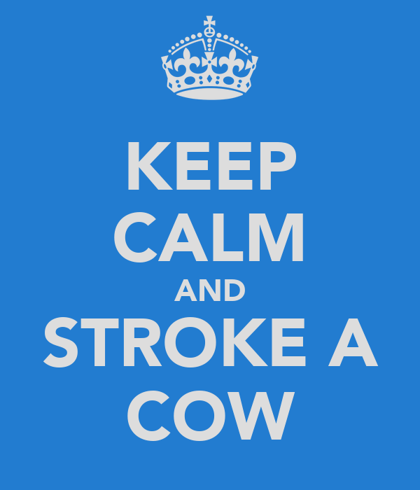 KEEP CALM AND STROKE A COW