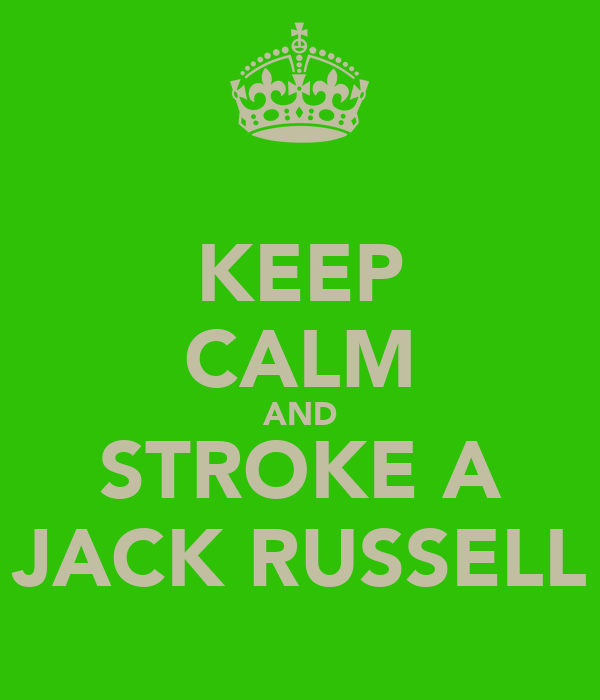 KEEP CALM AND STROKE A JACK RUSSELL