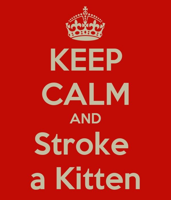 KEEP CALM AND Stroke  a Kitten