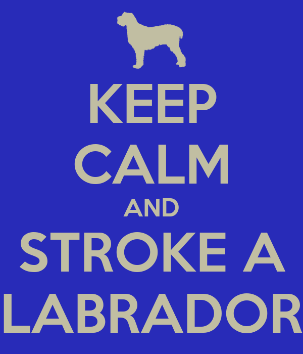 KEEP CALM AND STROKE A LABRADOR