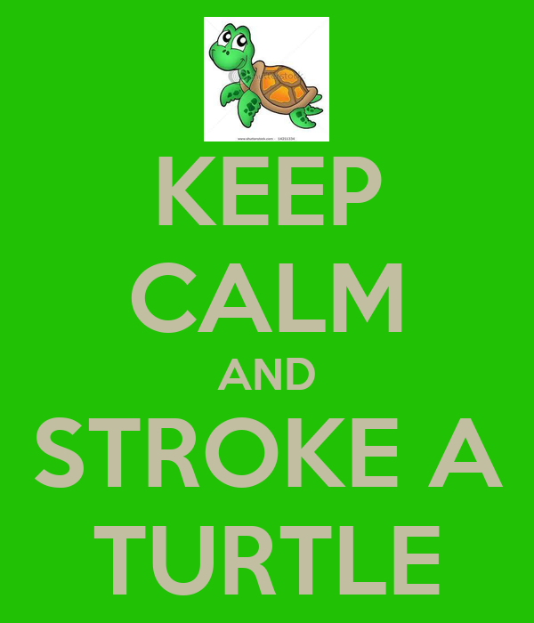 KEEP CALM AND STROKE A TURTLE