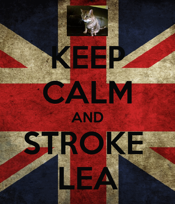 KEEP CALM AND STROKE  LEA