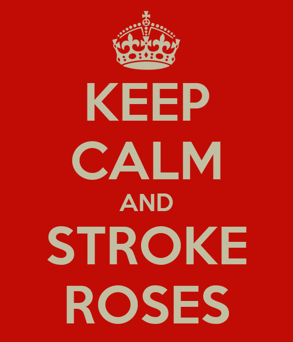 KEEP CALM AND STROKE ROSES