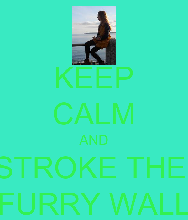 KEEP CALM AND STROKE THE  FURRY WALL