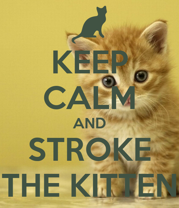 KEEP CALM AND STROKE THE KITTEN