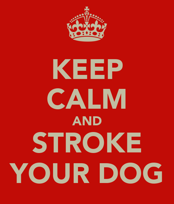 KEEP CALM AND STROKE YOUR DOG