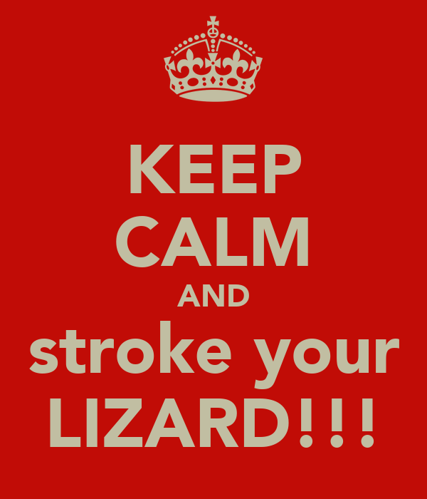 KEEP CALM AND stroke your LIZARD!!!