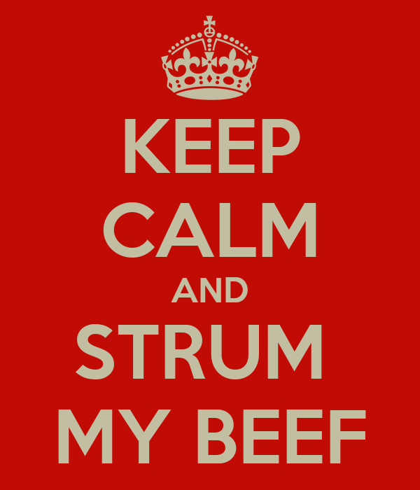 KEEP CALM AND STRUM  MY BEEF