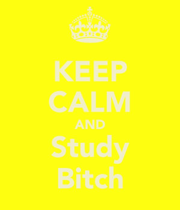 KEEP CALM AND Study Bitch