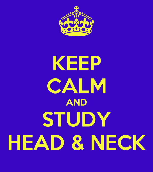 KEEP CALM AND STUDY HEAD & NECK