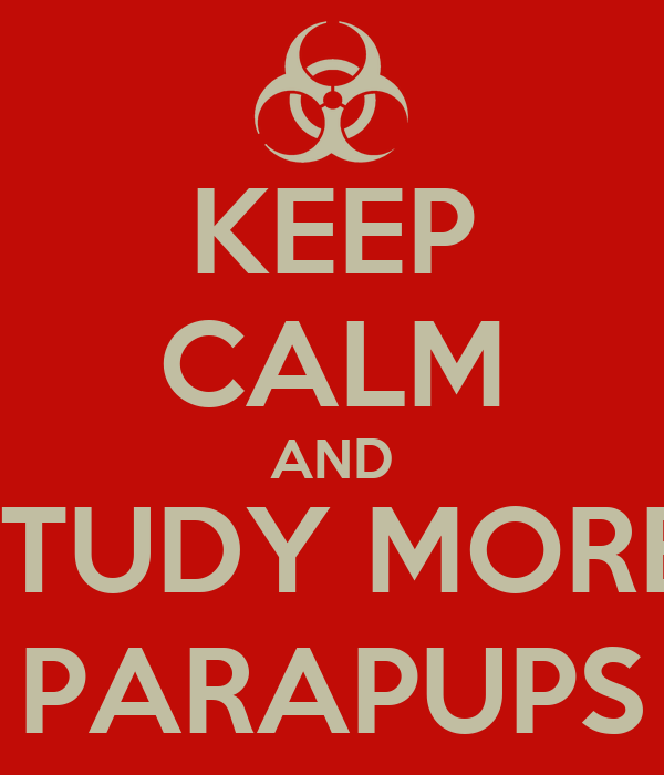 KEEP CALM AND STUDY MORE, PARAPUPS