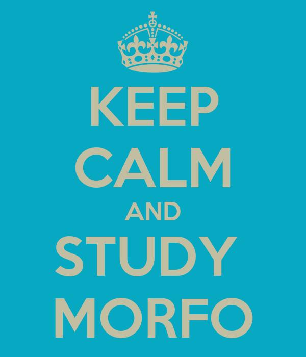 KEEP CALM AND STUDY  MORFO