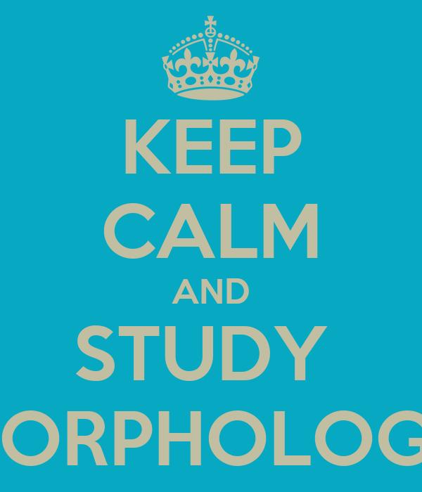 KEEP CALM AND STUDY  MORPHOLOGY
