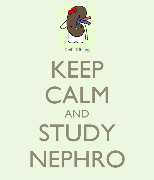 KEEP CALM AND STUDY NEPHRO