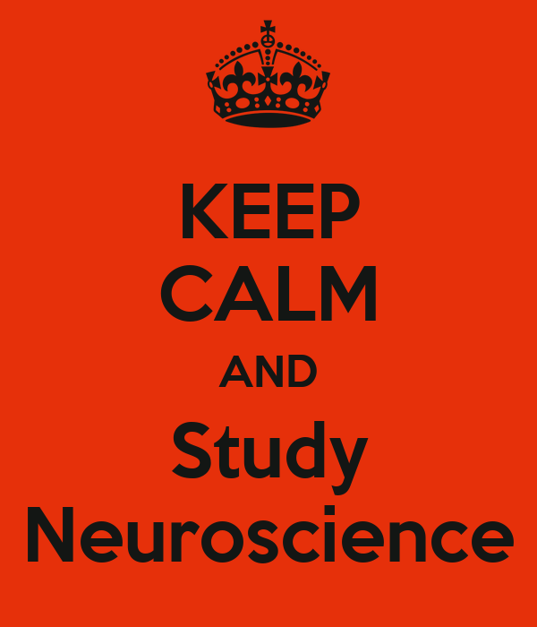 KEEP CALM AND Study Neuroscience