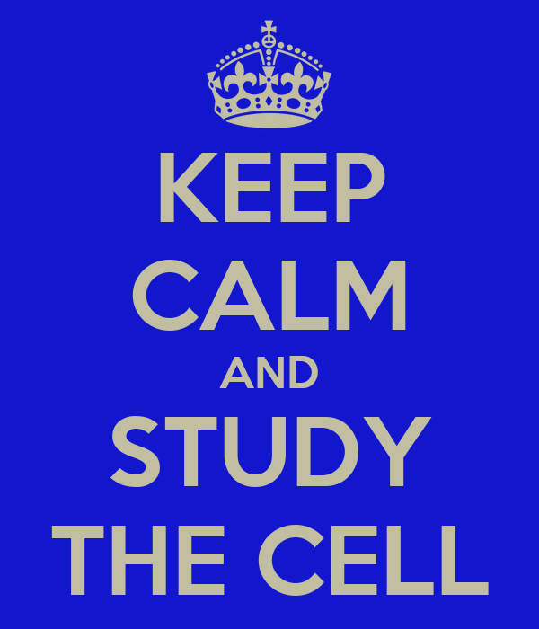 KEEP CALM AND STUDY THE CELL
