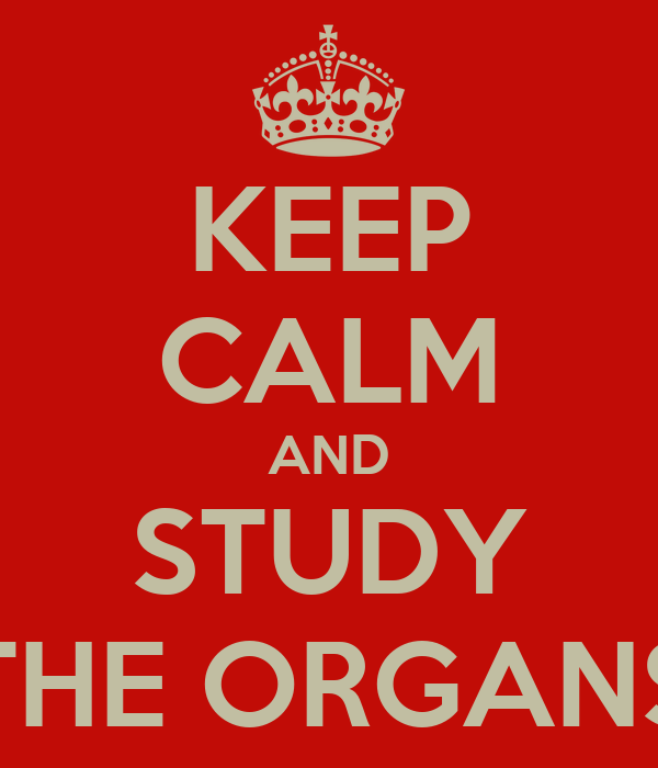 KEEP CALM AND STUDY THE ORGANS