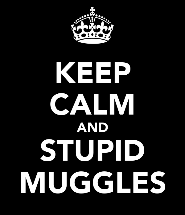 KEEP CALM AND STUPID MUGGLES