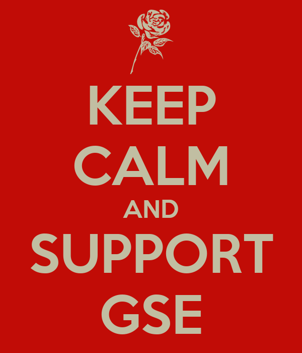 KEEP CALM AND SUPPORT GSE