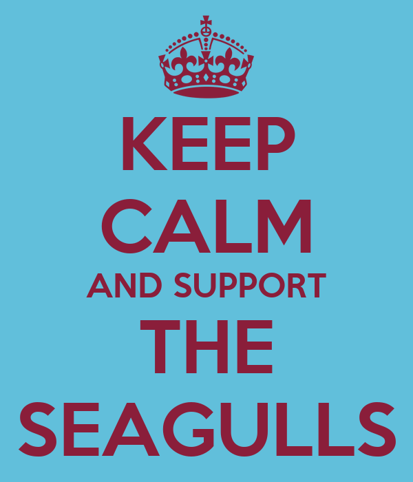 KEEP CALM AND SUPPORT THE SEAGULLS